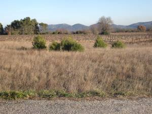 The plains around AC Cotes de Provence- Pierrefeu
