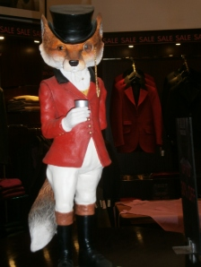 Fox in the red hunting jacket known as a Pink jacket after the tailor