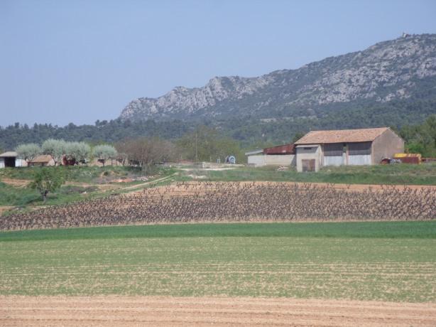 Terroir des Hauts Plateaux