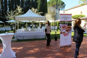 The tasting table for 2014 rosés