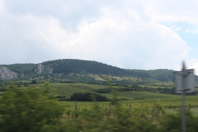 The rolling hills of Moravia
