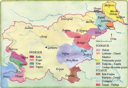 Map of Slovenian Wine Regions