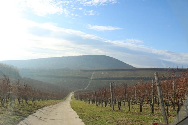 Kopár hill