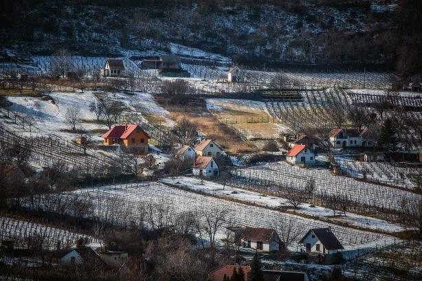 Szekszárd Szekszárd vineyards in the snow from Winesofa.eu